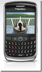 blackberry curve_8900_index