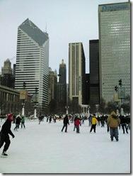 Millenium Park. Chicago. 2009 January