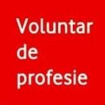 vodafone voluntar de profesie
