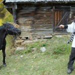 Dac liber in Muntii Apuseni, Scoala Lui Gerula (1024x683)