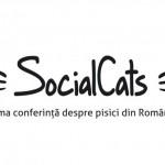 SocialCats-1024x414