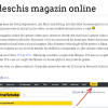 razvan baciu trafictube magazin online