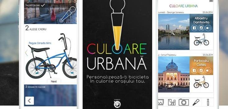 Pegas culoare urbana