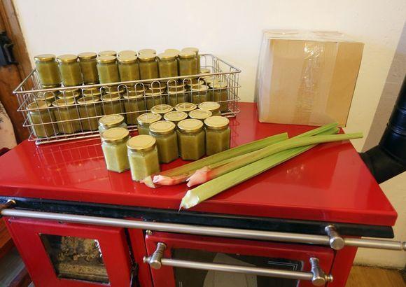 saschiz gem sasec de rubarba (6)