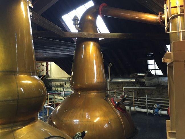 chivas-distillery