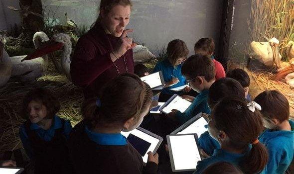 elevi samsung lectie interactiva